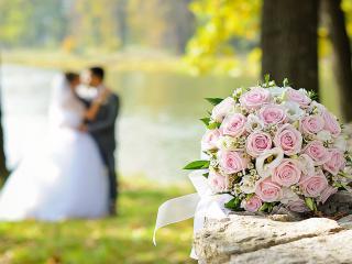 фотографа на свадьбу
